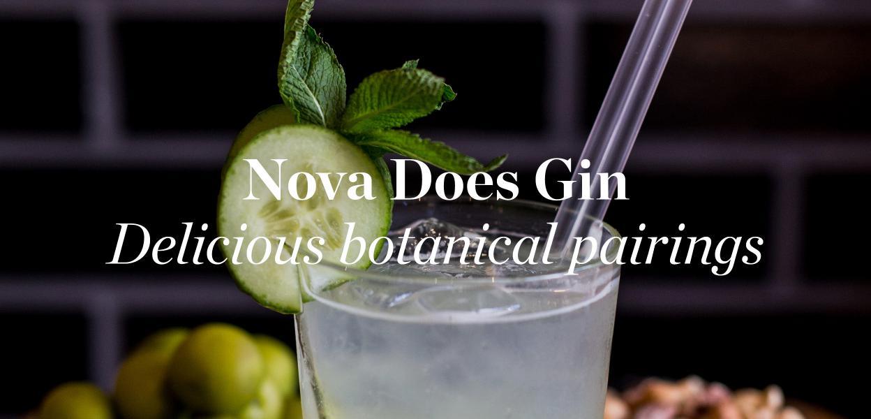 gin-pairing-nova