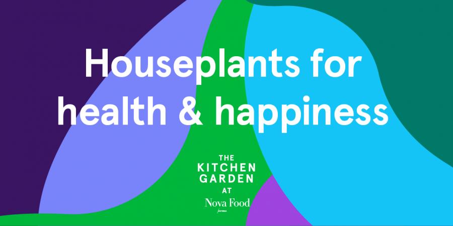 kitchen-gardens-nova