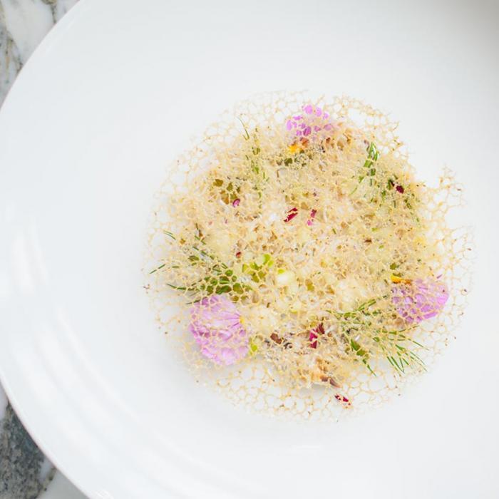 aster launches vegan brunch