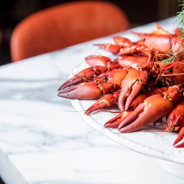 aster-crayfish-lunch